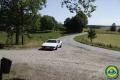 LFS-15_Rally-lör025